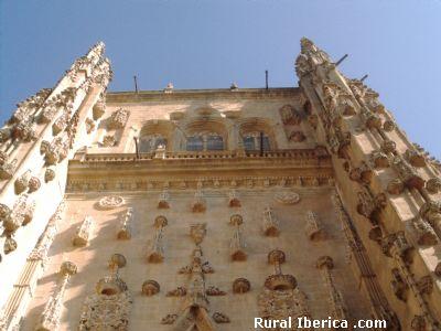 Fachada de la Catedral de Salamanca - Salamanca, Salamanca, Castilla y León