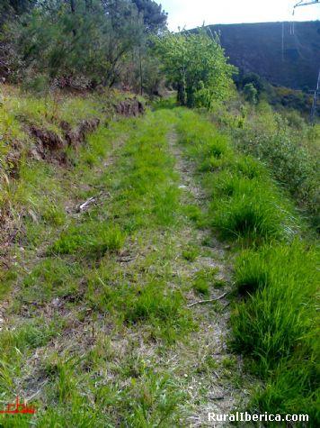 El camino de la piedra. Petín, Orense - Petín, Orense, Galicia