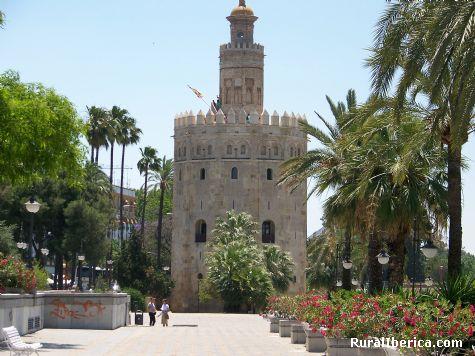 Torre del Oro en Sevilla. Sevilla, Andalucía - Sevilla, Sevilla, Andalucía