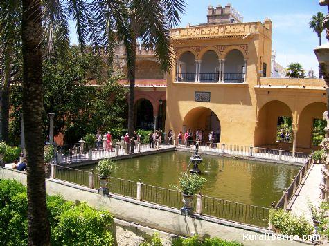 Jardines de los Reales Alcázares. Sevilla, Andalucía - Sevilla, Sevilla, Andalucía