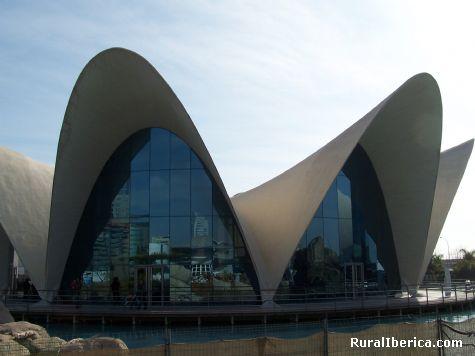 Oceanografic. Valencia, Comunidad Valenciana - Valencia, Valencia, Comunidad Valenciana