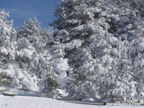 Días blancos en Santa Inés (Soria) - Soria, Soria, Castilla y León