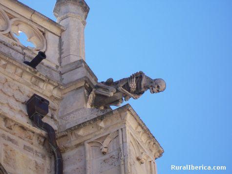 Gargola de la Catedral de Palencia - Palencia, Palencia, Castilla y León