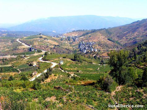 Campos de cultivo y Portomourisco, Ourense - Portomourisco, Orense, Galicia
