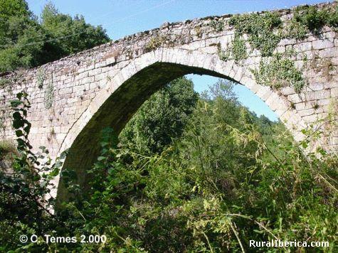 Ponte navea - trives, Orense, Galicia