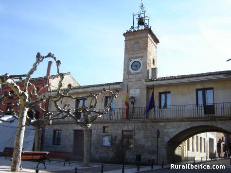 Ayuntamiento. Palencia. - Palencia, Palencia, Castilla y León
