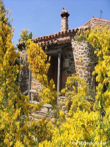 Ente retamas. Valencia de Alcántara, Cáceres - Valencia de Alcántara, Cáceres, Extremadura