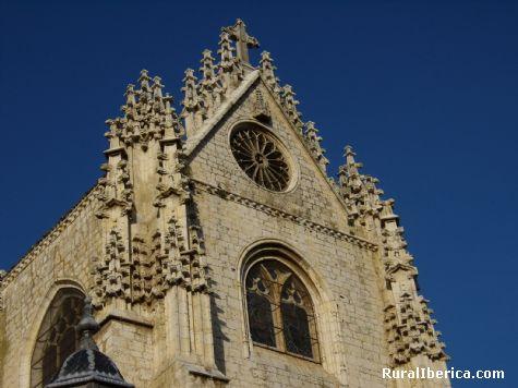 Catedral. Palencia. - Palencia, Palencia, Castilla y León