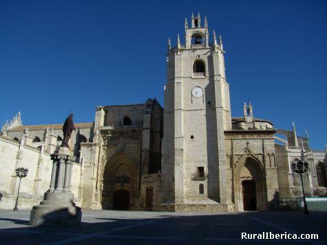 Catedral de San Antolín. Palencia. - Palencia, Palencia, Castilla y León
