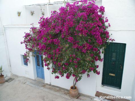 alegr�a en la fachada - N�jar, Almer�a, Andaluc�a