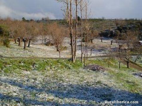 Paisaxe das enciñeiras - Quiroga, Lugo, Galicia