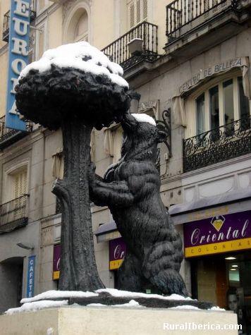 Neve no madroño - Madrid, Madrid, Madrid