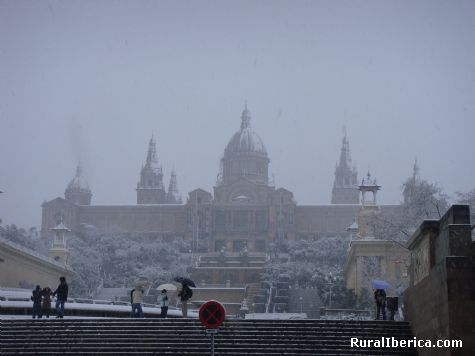 Nevabdo en Barcelona - Barcelona, Barcelona, Cataluña