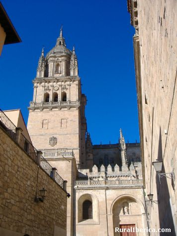 Catedral Vieja de Salamanca. Salamanca, Castilla y Le�n - Salamanca, Salamanca, Castilla y Le�n