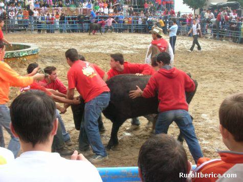 Feria Valdelacalzada. Vaquillas - Valdelacalzada, Badajoz, Extremadura