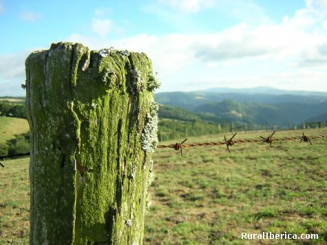 Paisajes y líquenes. A Braña (A Fonsagrada), Lugo - A Braña (A Fonsagrada), Lugo, Galicia
