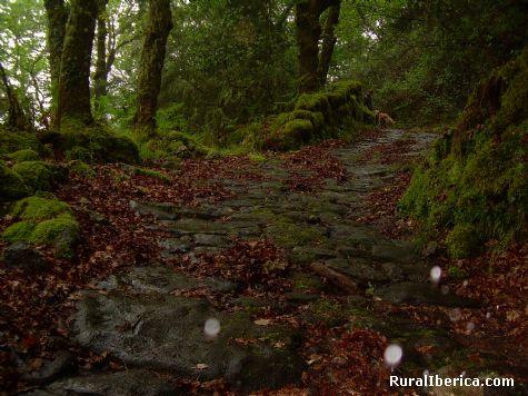 camiño da raiña  - a cañiza, Pontevedra, Galicia