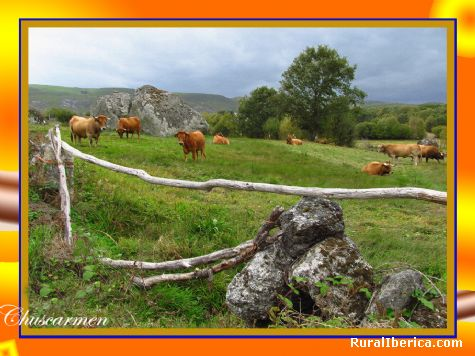 Corzos-A Veiga. A Veiga, Orense - A Veiga, Orense, Galicia