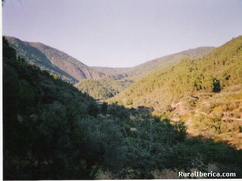 Avellanar.Las Hurdes. - Avellanar, Cáceres, Extremadura