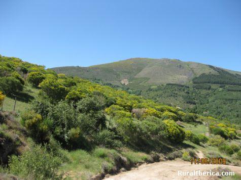 La Sierra Piemula - Navacepedilla de Corneja, Ávila, Castilla y León