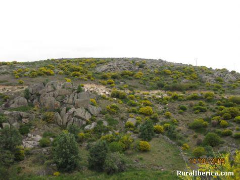 La Solanilla - Navacepedilla de Corneja, Ávila, Castilla y León