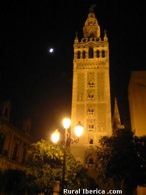 Vista nocturna de la Giralda de Sevilla - Sevilla, Sevilla, Andalucía