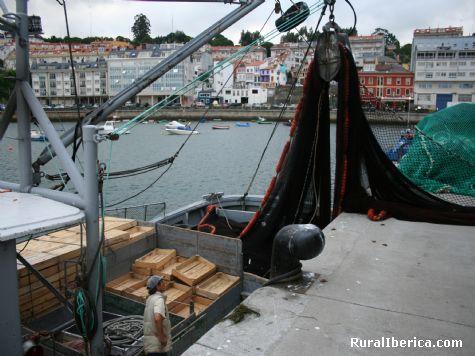 Puerto de Sada, La Coruña - Sada, La Coruña, Galicia