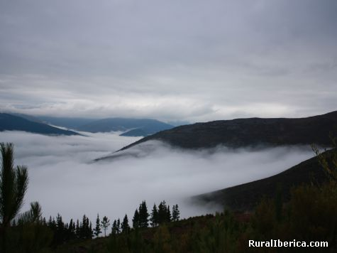 niebla en Valdeorras - petin, Orense, Galicia