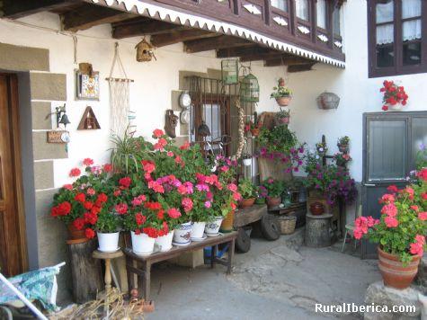 Rincon florido. Espinosa de Bricia, Cantabria - Espinosa de Bricia, Cantabria, Cantabria
