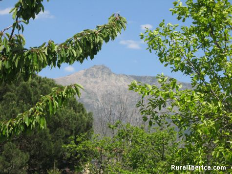 Pinajarro. Herv�s, C�ceres - Herv�s, C�ceres, Extremadura