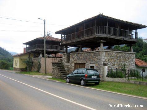 Paneras en Allence - Villazon, Asturias, Asturias
