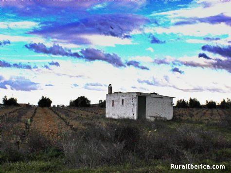 Color Blanco. Herencia, Ciudad Real - Herencia, Ciudad Real, Castilla la Mancha