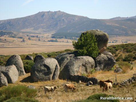 Las Canicas. Garganta del Villar, Ávila - Garganta del Villar, Ávila, Castilla y León