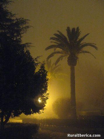 Parque de Hervás con niebla. Hervás, Cáceres - Hervás, Cáceres, Extremadura