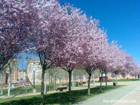 Parque de Sta. B�rbara (Soria) - Soria, Soria, Castilla y Le�n