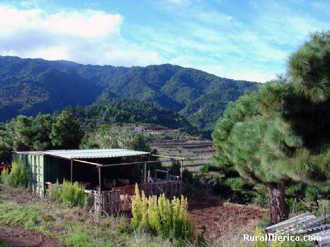 Llano de Tenagua desde mi Granja. Tenagua, Santa Cruz de Tenerife - Tenagua, Santa Cruz de Tenerife, Islas Canarias