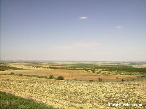 LLanuras Manchegas. Balazote, Albacete - Balazote, Albacete, Castilla la Mancha