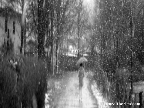 Bajo la nieve. Ir�n, Guip�zcoa - Ir�n, Guip�zcoa, Pa�s Vasco