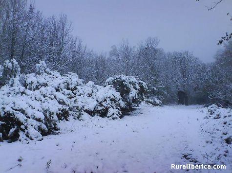 Neve en Rubia - Rubia, Orense, Galicia