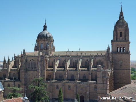 Catedral de Salamanca. Salamanca, Castilla y León - Salamanca, Salamanca, Castilla y León