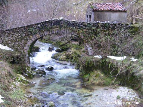 Puente sobre rio de monta�a - Avil�s, Asturias, Asturias
