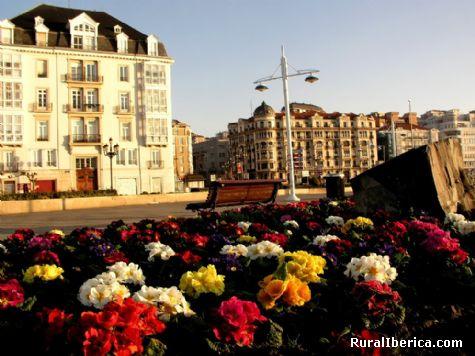 Flores en Puertochico. Santander, Cantabria - Santander, Cantabria, Cantabria