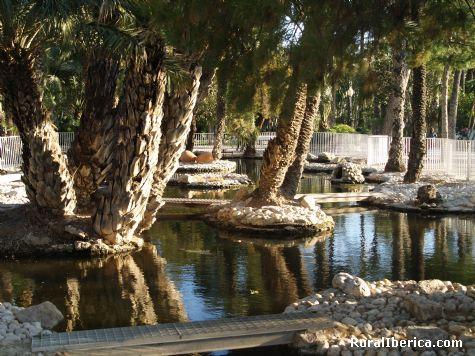 Parque municipal de Elche - Elche, Alicante, Comunidad Valenciana