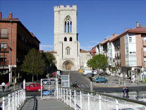 San Miguel. Palencia - Palencia, Palencia, Castilla y León