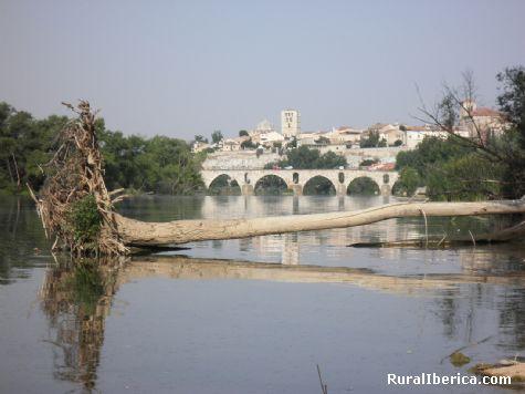 Rio Duero y Catedral - Zmora, Zamora, Castilla y Le�n