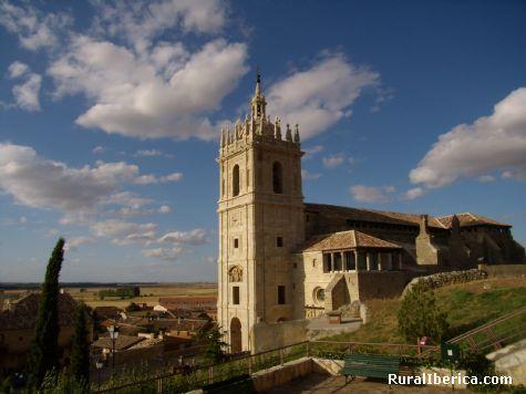 San Hipólito. Támara de Campos, Palencia. - Támara de Campos, Palencia, Castilla y León
