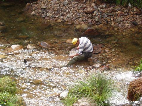 Ismael  sanfiz buscado oro el rio de navelgas - navelgas, Asturias, Asturias
