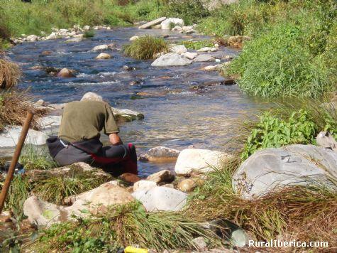Joaquin Sanfiz  bateando  en el  rio Navelgas - Navelgas, Asturias, Asturias
