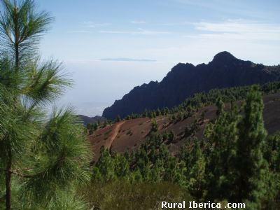 Paisaje volcánico de Tenerife - Tenerife, Santa Cruz de Tenerife, Islas Canarias
