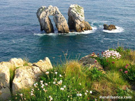 Primavera en Costa Quebrada. Liencres, Cantabria - Liencres, Cantabria, Cantabria